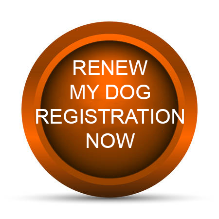 Renew Dog Registration Button