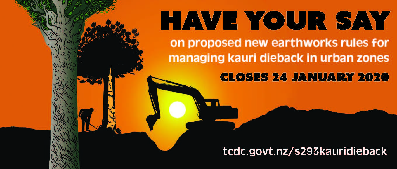 Graphic on consultation on earthworks rules for kauri dieback