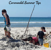 Image from cover of Coromandel Summer Tips brochure