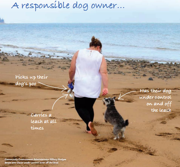 A responsible dog owner