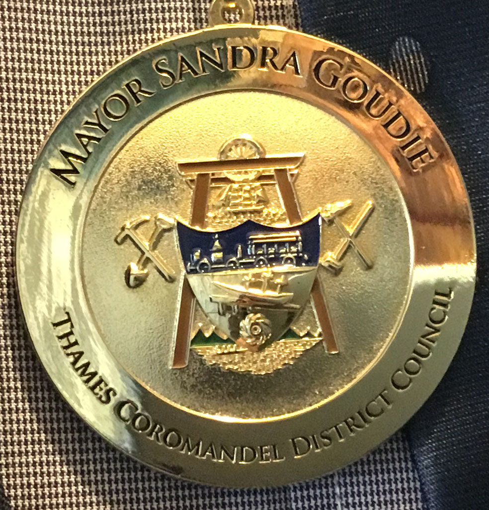 Front face community service medal