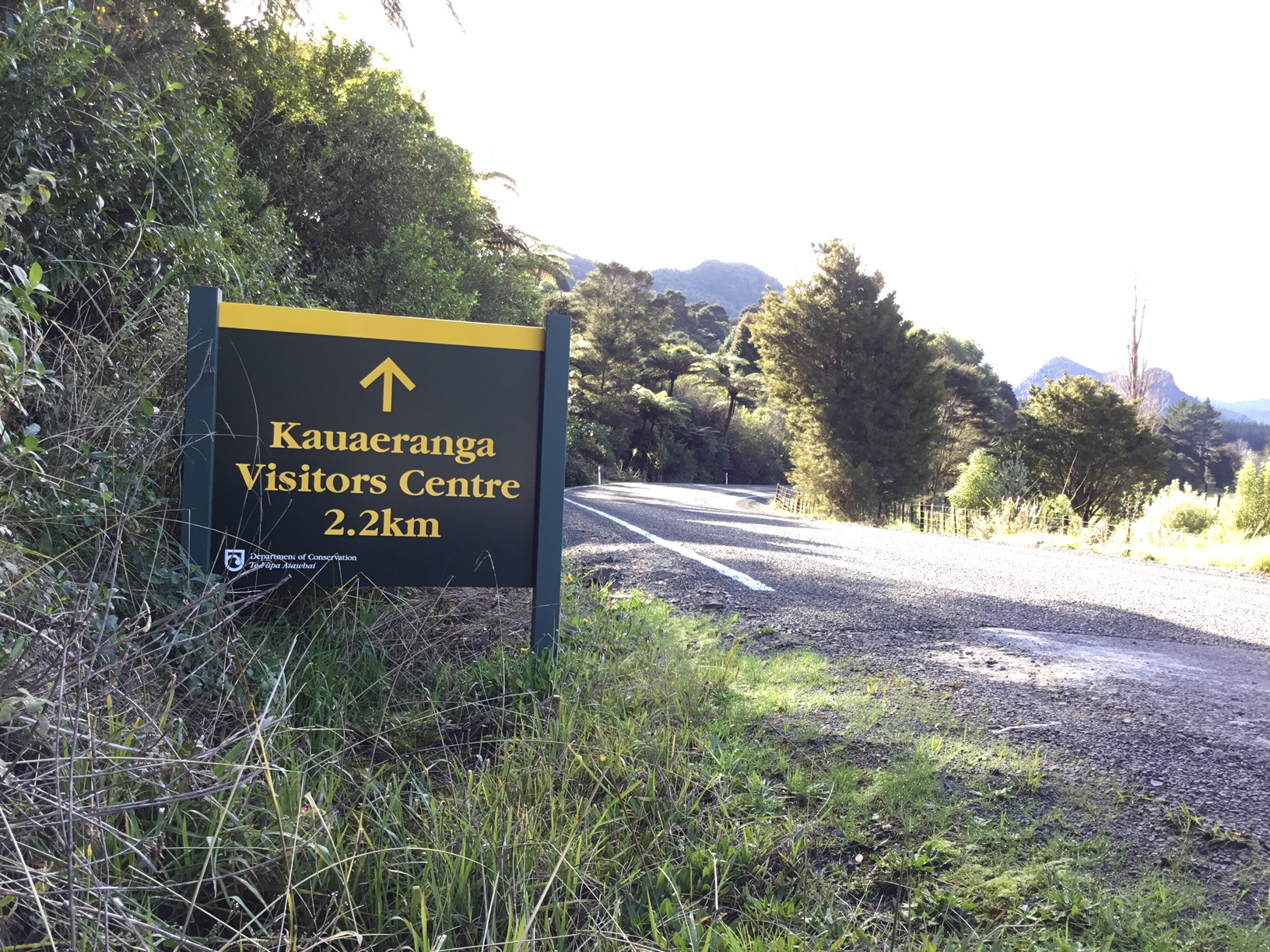 Kauaeranga Valley Road has now been sealed all the way to the DOC Visitor Centre, thanks to a joint TCDC-DOC project.)