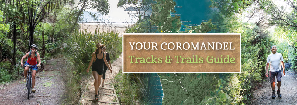 Check out our new-look Your Coromandel Tracks and Trails Guide